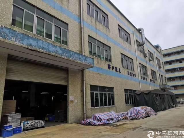 松岗107国道边红本独门独院3300平