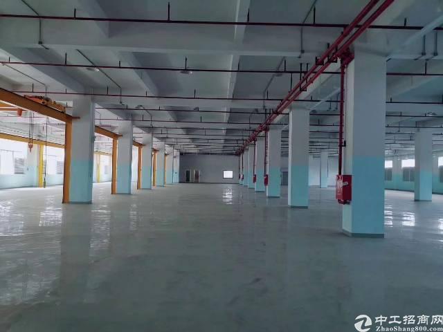 长安沙头新出一楼带装修厂房3000平方出租