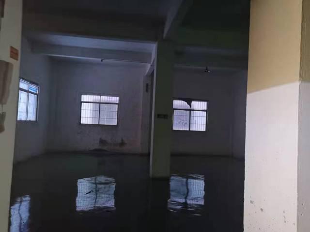 南村坑头新出一楼300平方仓库5200全包-图2