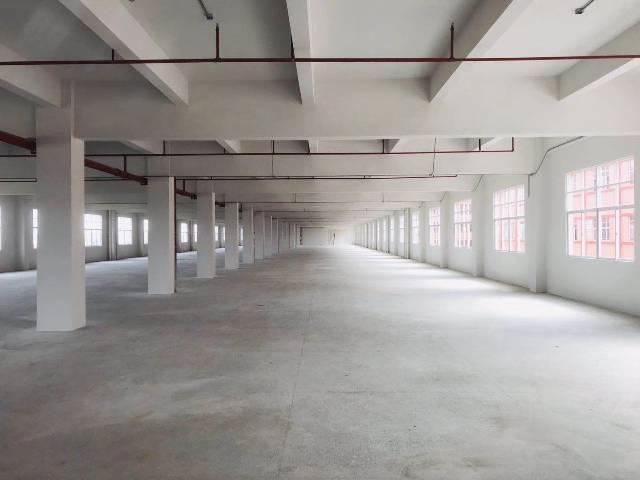 惠州市惠阳区新圩原房东花园式红本独院厂房共6100平方-图3