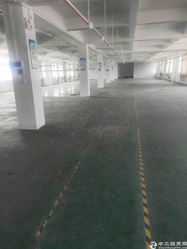 广州市黄埔经济开发区东区街道云庆路1100标准厂房招租。-图7