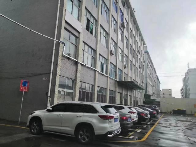 惠阳区沙田镇新出楼上现成装修1000平方出租