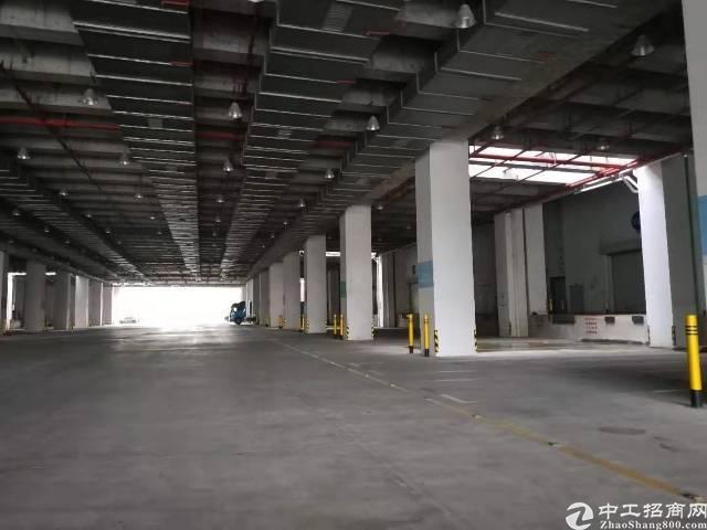 前海保税仓一楼二楼大面积仓库500平米起分租