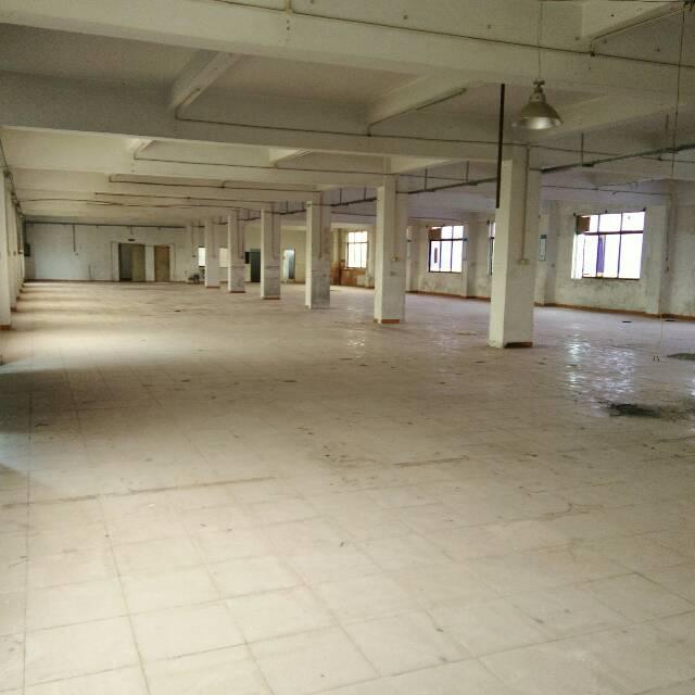 塘厦镇石马原房东二楼1000平方,适合做、服装、仓库