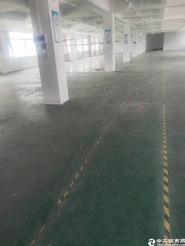 广州市黄埔经济开发区东区街道云庆路1100标准厂房招租。-图6