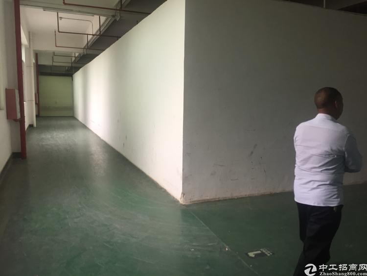 惠州仲恺平南带装修2000平出租
