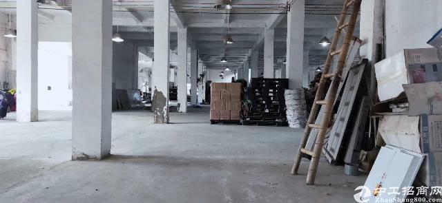 惠东曾光独门独院单一层2500㎡出租