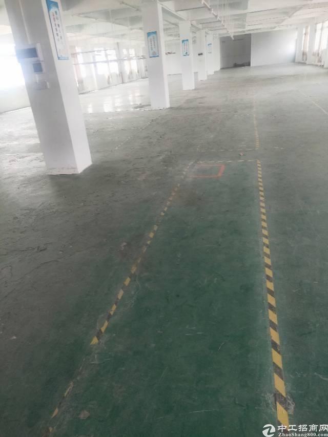 广州市黄埔经济开发区东区街道云庆路1100标准厂房招租。-图2