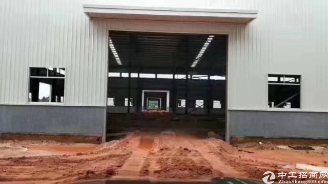樟木头镇金河管理区新出钢构厂房出租12000平米