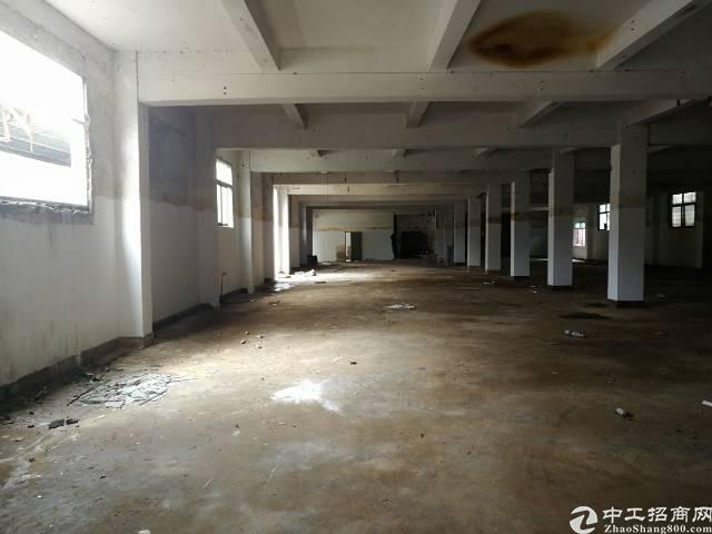 大亚湾澳头中兴路一楼标准厂房1200平方