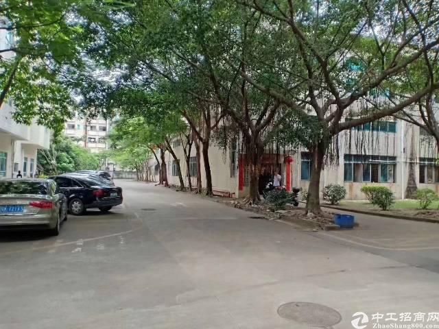 平潭26000㎡国有证厂房出售