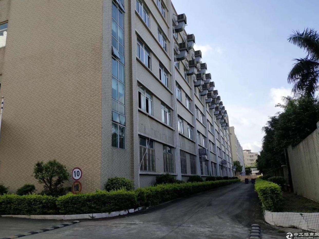 惠城区三栋工业园内占地43000平方米国有证厂房出售