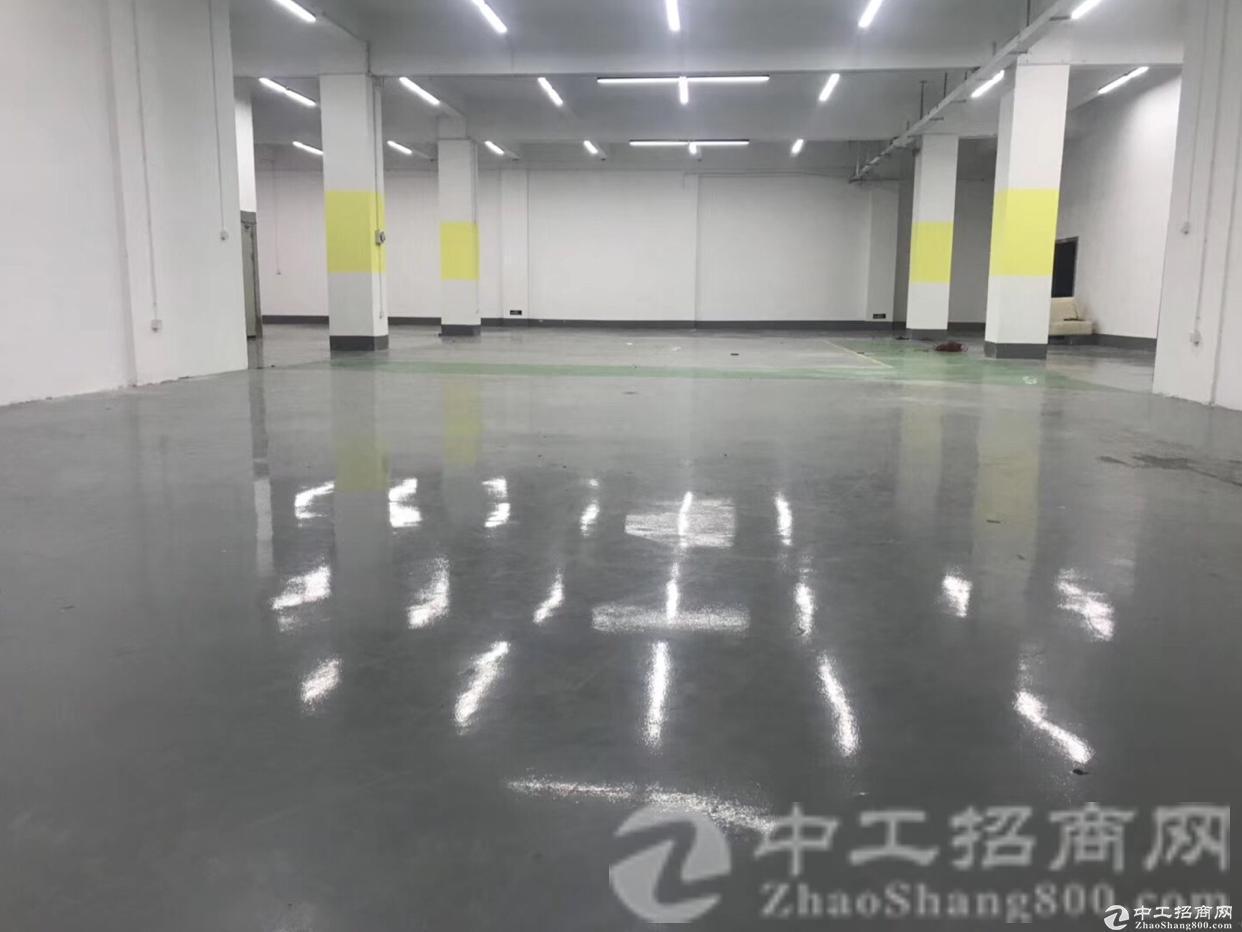 厚街镇陈屋村一楼厂房1250平米招租,形象好