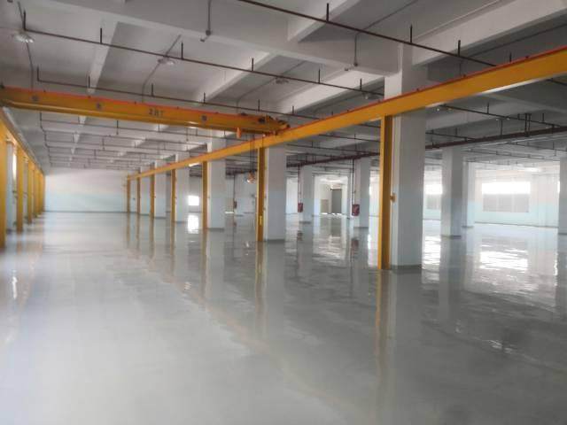 黄江镇靠深圳花园式厂房标准一楼1500平带5吨行车