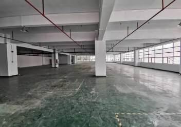 深圳市李松蓢新出楼上厂房图片1