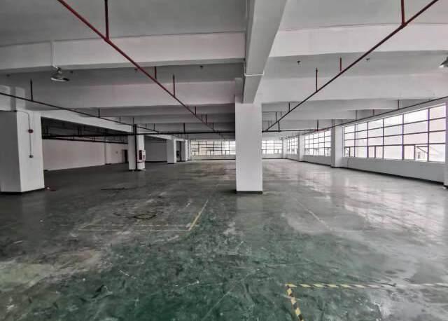 深圳市李松蓢新出楼上厂房