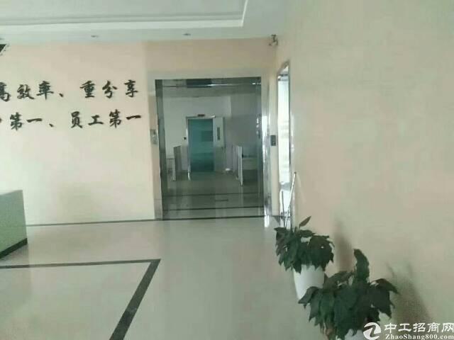 1230平方米带豪华办公室装修厂房出租-图5