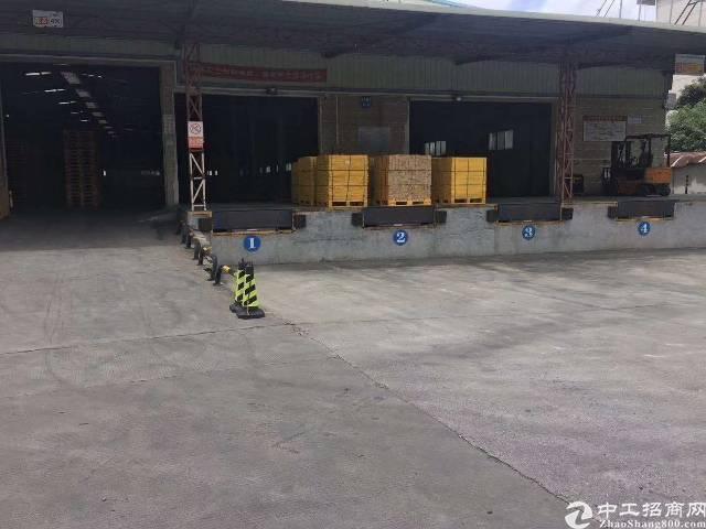 观澜新出原房东独院标准钢构物流仓库