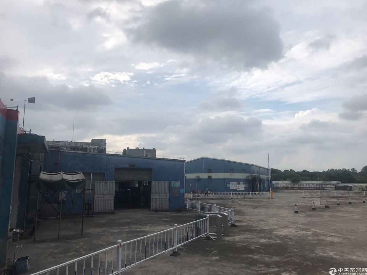 大岭山独院厂房5000平方米集体证35年售价1900万元