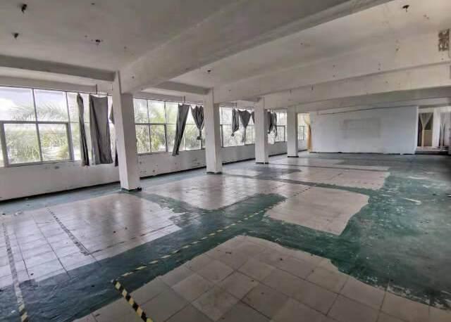 深圳公明南光高速下村出口新出楼上厂房