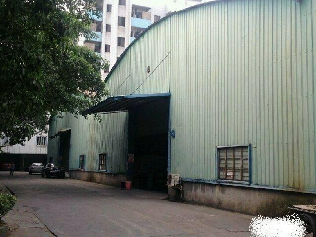 樟木头小面积380平独栋钢构仓库厂房