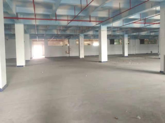 长安乌沙原房东一楼带装修厂房2000平方水电齐全