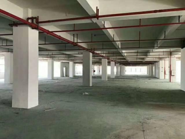 产业园区中心位置全新红本独院厂房出租
