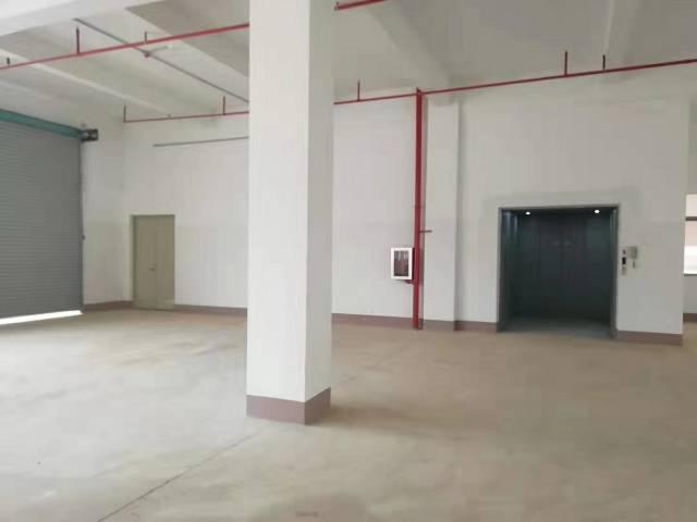 惠城小金口原房东全新独院标准厂房5000平出租-图3