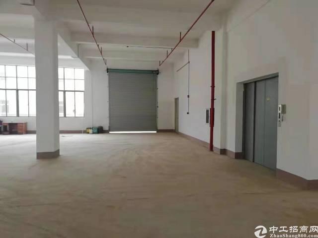 惠城小金口原房东全新独院标准厂房5000平出租-图5