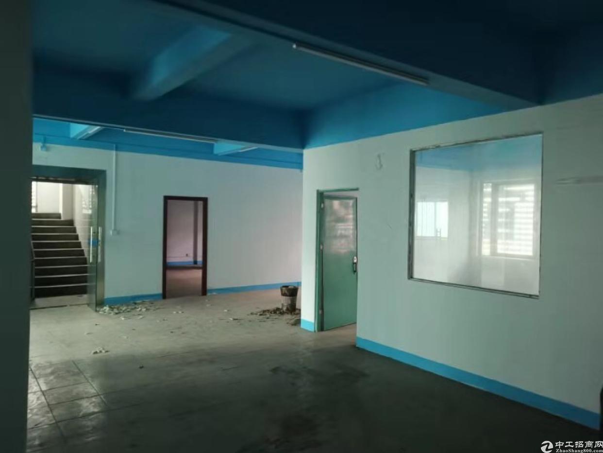 塘厦石潭埔二楼标准厂房300平方米出租