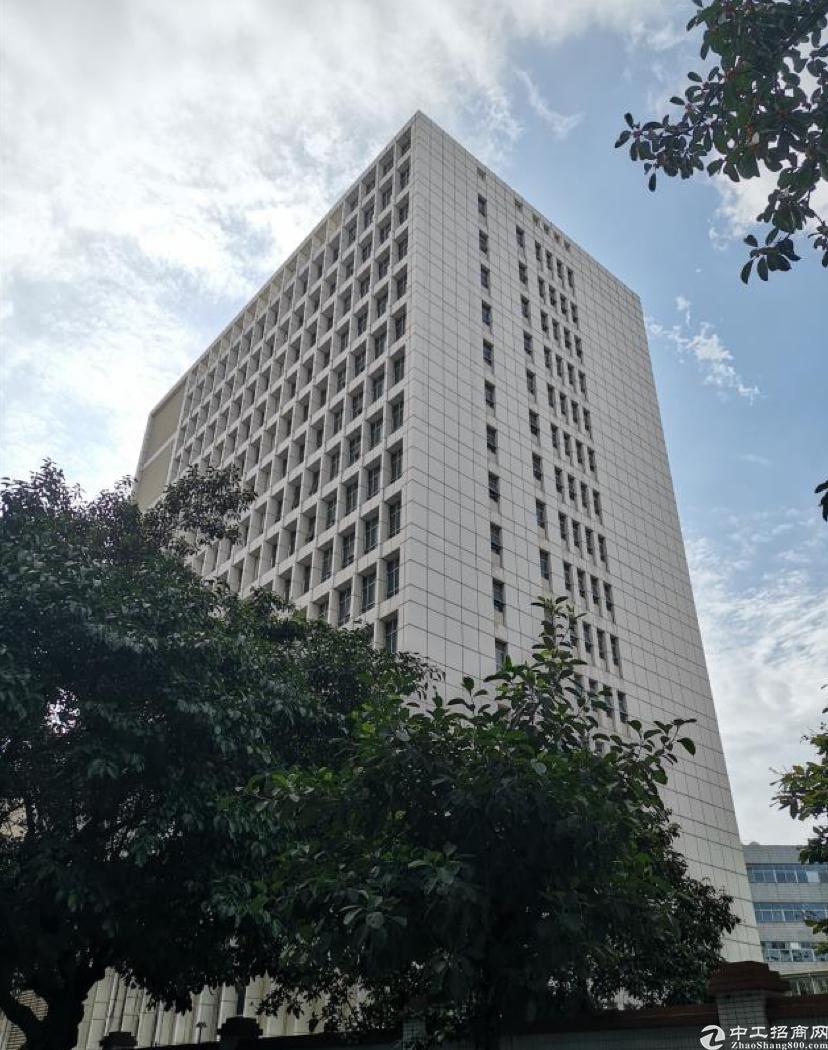 福永万福广场附近原房东写字楼60平方起租