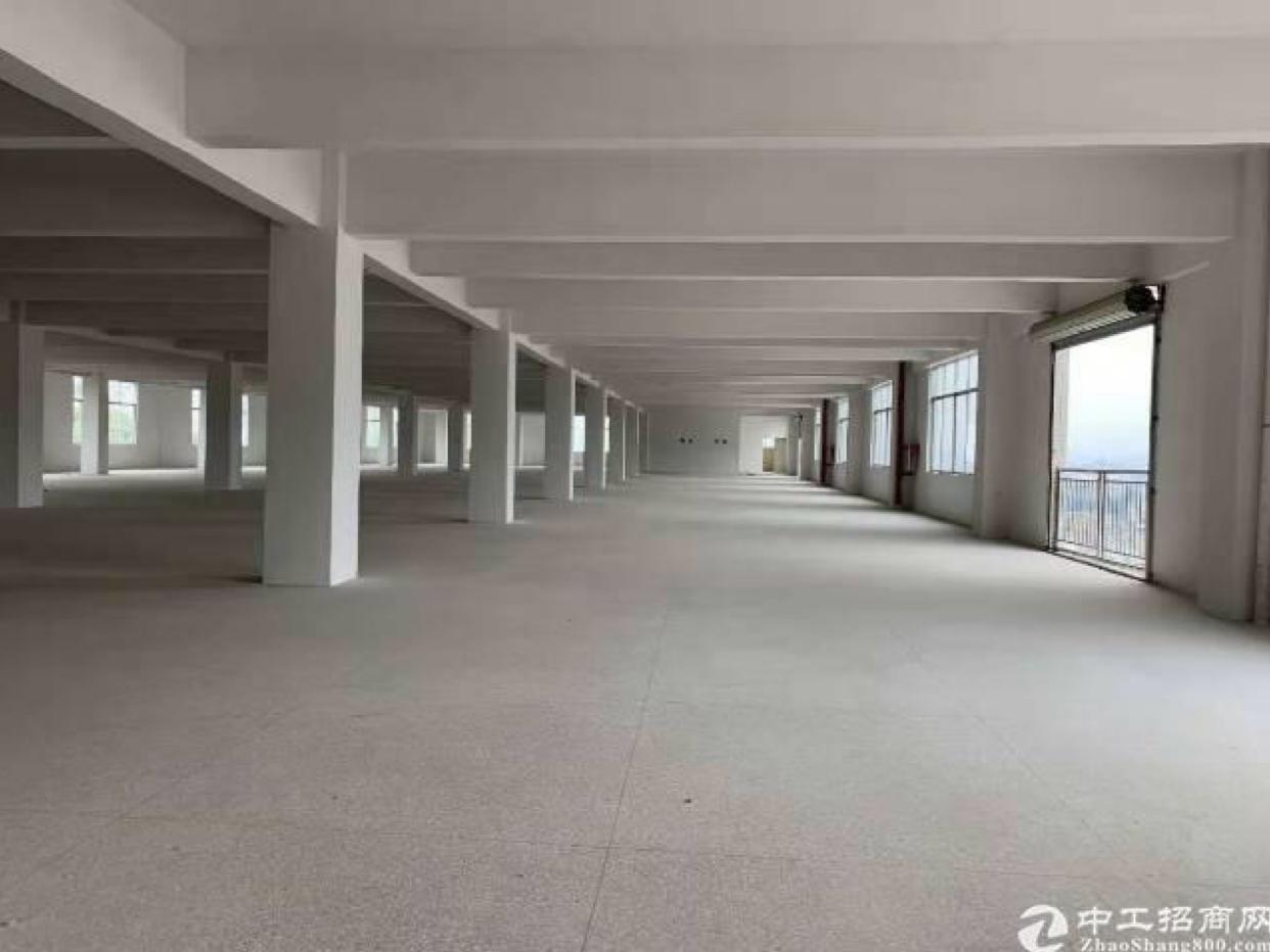 107国道旁,全新现房8500㎡仅售2680万