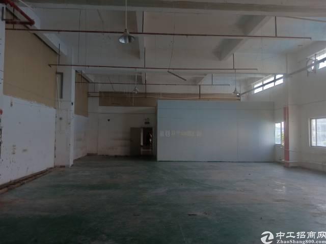 谢岗镇原房东1830平5.5米高带装修带喷淋12元/平出租