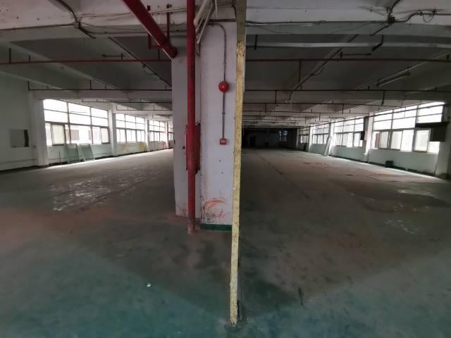 深圳光明新出楼上非常便宜的厂房-图2