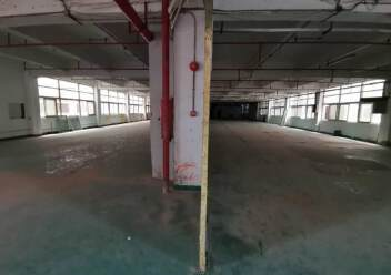 深圳光明新出楼上非常便宜的厂房图片2