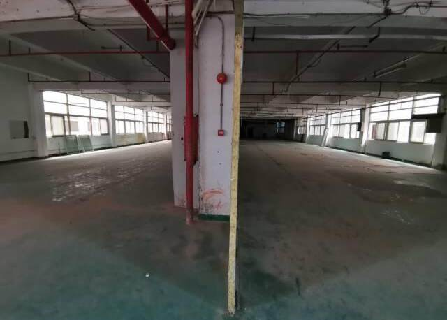 深圳光明新出楼上非常便宜的厂房