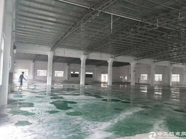 单一层钢构厂房招租,3000平滴水9米,能进拖头,可办环评-图2