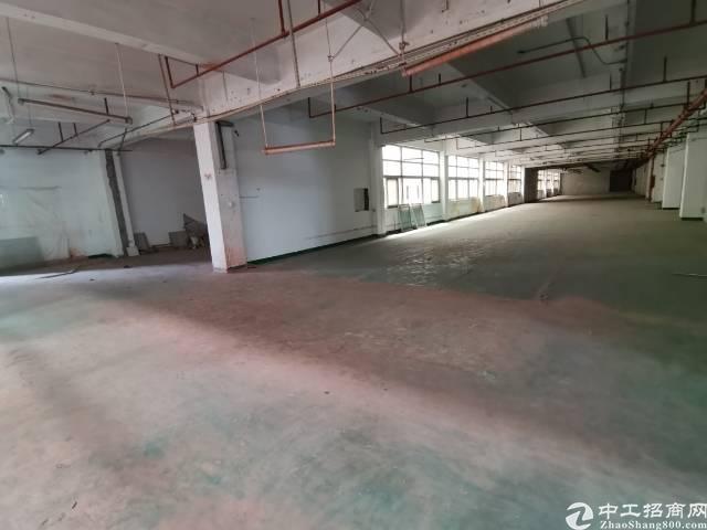 深圳光明新出楼上非常便宜的厂房-图4