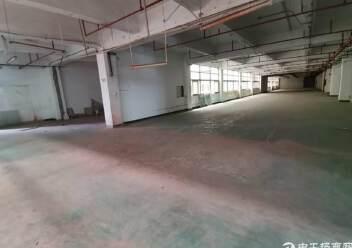 深圳光明新出楼上非常便宜的厂房图片4