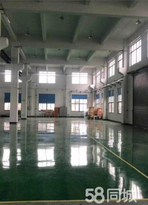 塘厦一楼6.5米高1200平方带牛角重工业厂房