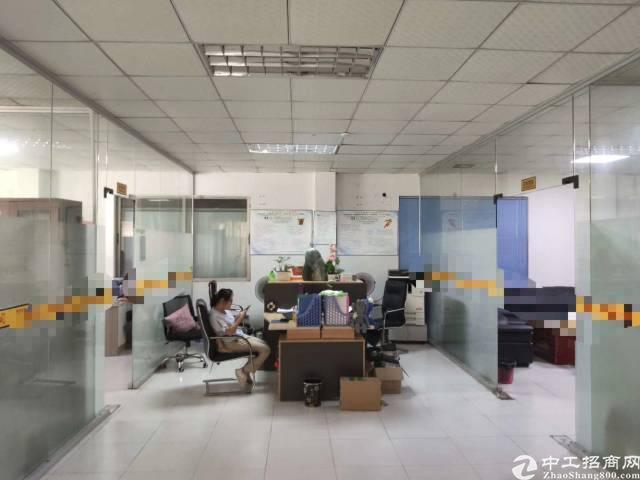 惠州沥林精典小独院厂房面积4300平米,租金14-图3