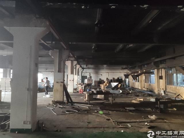 塘厦镇平山新出原房东独院4000㎡-图2