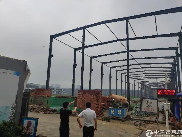 全新单层钢结构厂房出售面积1000起售