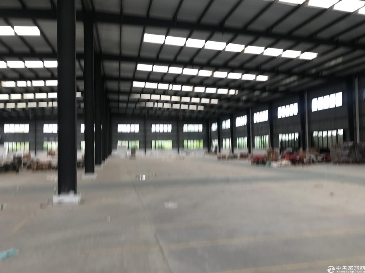 贾家食品厂房3600平方左右水电气全通-图4