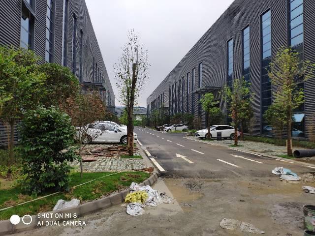 标准厂房1200-8500平家具塑料喷漆喷塑-图3