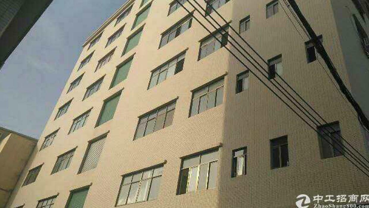 石排新出楼上1500方9.5成新厂房