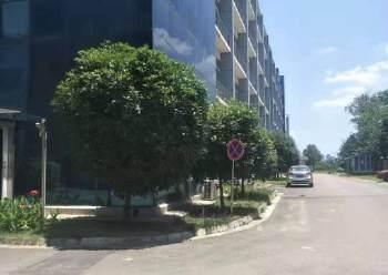 龙泉经开区精装办公室出租面积可分图片4