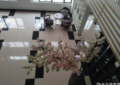 (出租)观澜桂花精装修写字楼,温馨的公共区域