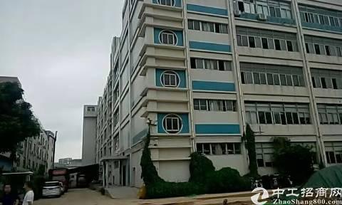 龙华5000平仓库厂房出租