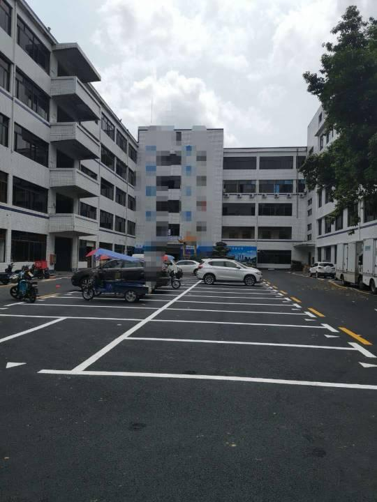 盐田东海道主干道新出楼上500平带精装修红本厂房